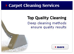 panel-carpet-cleaning-services