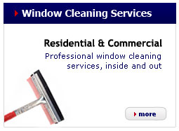 panel-window-cleaning-services